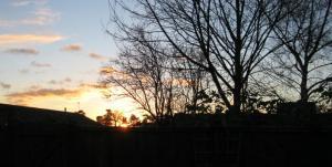 sunsetcharnwood